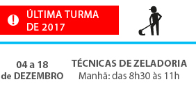 tecnica_zeladoria_2017-ultima-do-ano-2